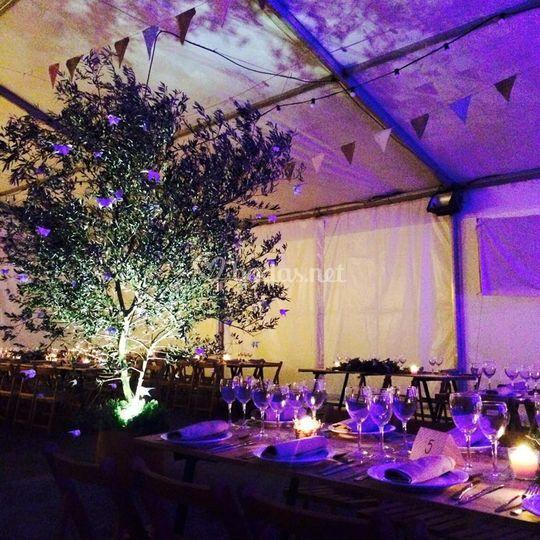 Iluminación cena de gala