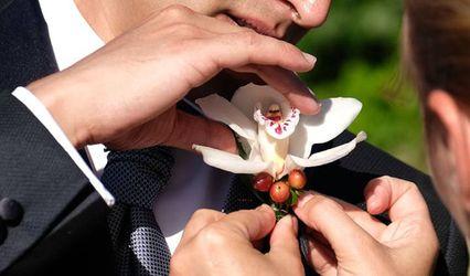 Harmonía Floral