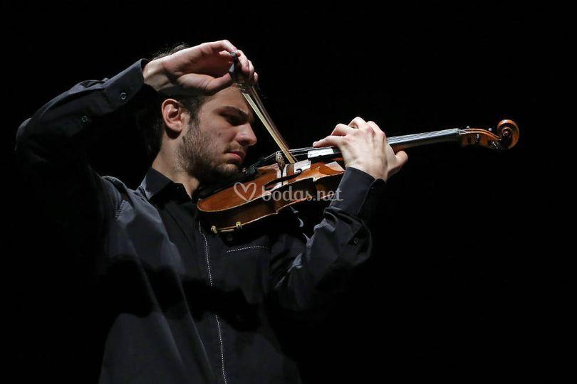 Violionista Concertino