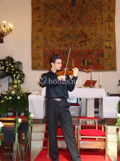 Violinista Concertino