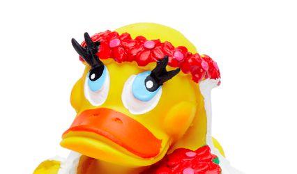 Sevilla Duck Store 1