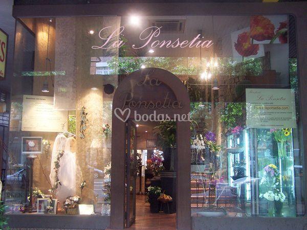 Nuestra tienda  de La Ponsetia