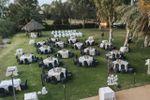 El banquete al aire libre