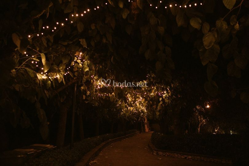 Pasillo entrada de noche