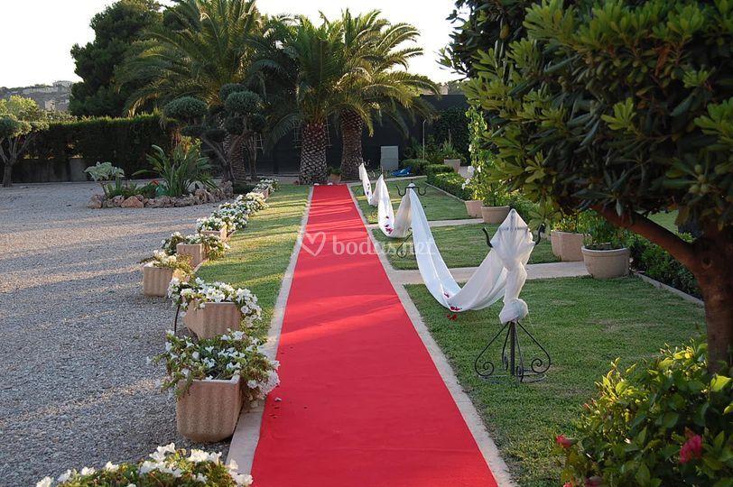 Paseo de la novia hacia el altar