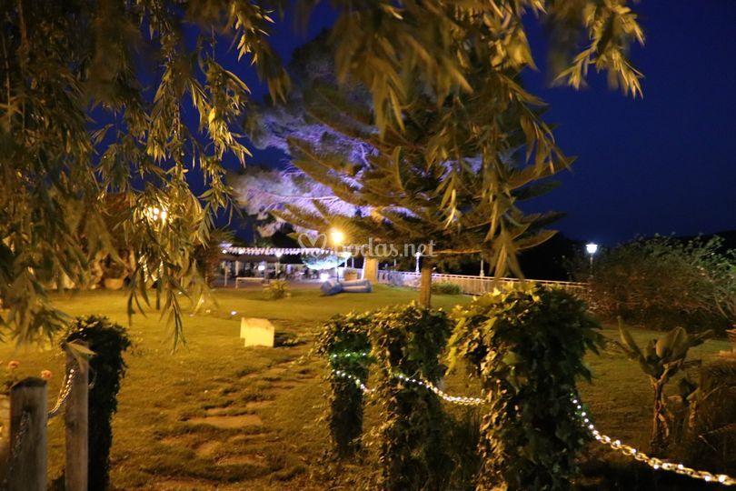 Zona de jardín y árbol iluminado