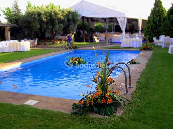 Maria pilar seral floristas for Jardines con piscinas desmontables