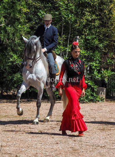 Don Juan y Rosario