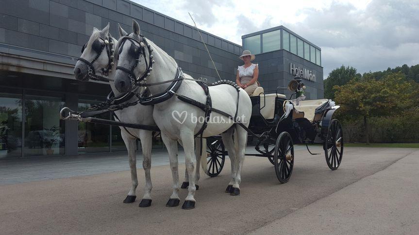 Carruaje con dos caballos