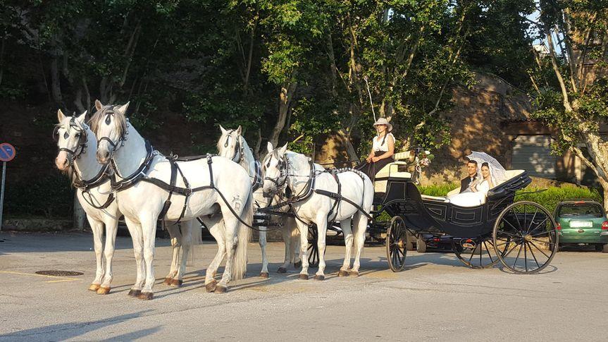 Carruaje de cuatro caballos para bodas