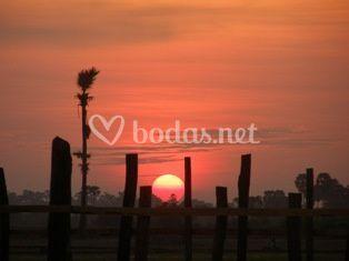 Puesta de sol en los arrozales de Camboya