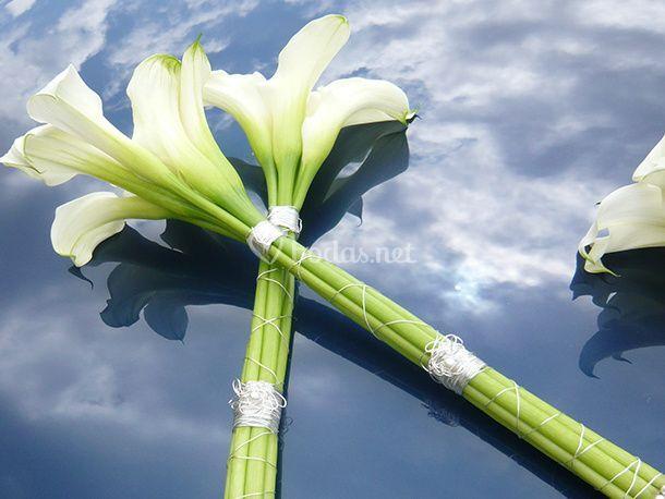 Ambients Florals