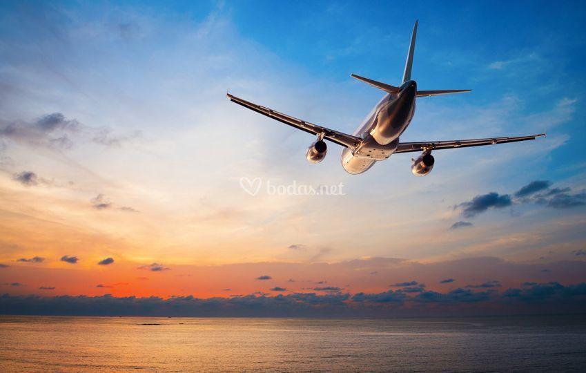 Viaje perfecto