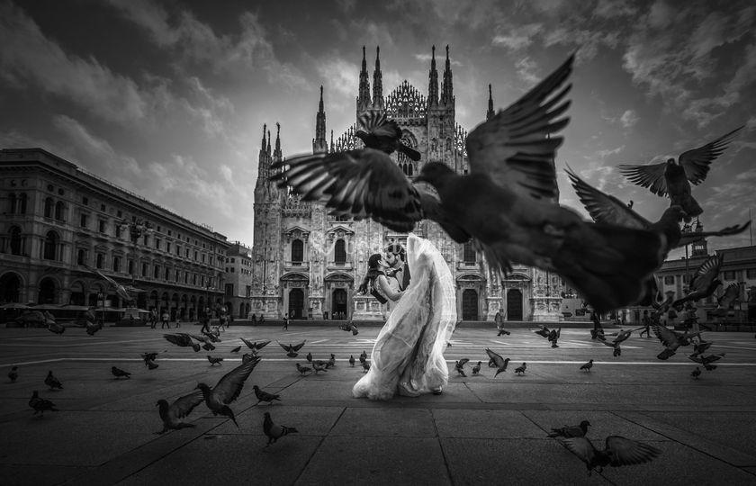 Paloma en Milán