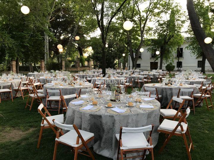 Banquete en jardín principal