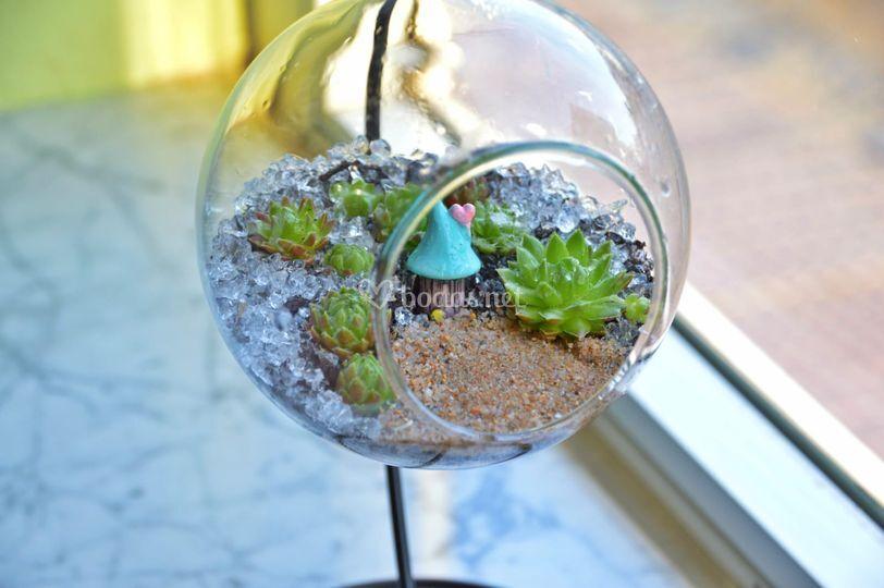 Terrario burbuja