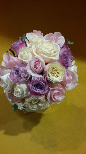 R novia rosas tricolor