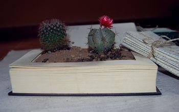 Centros de mesa con libros y plantas