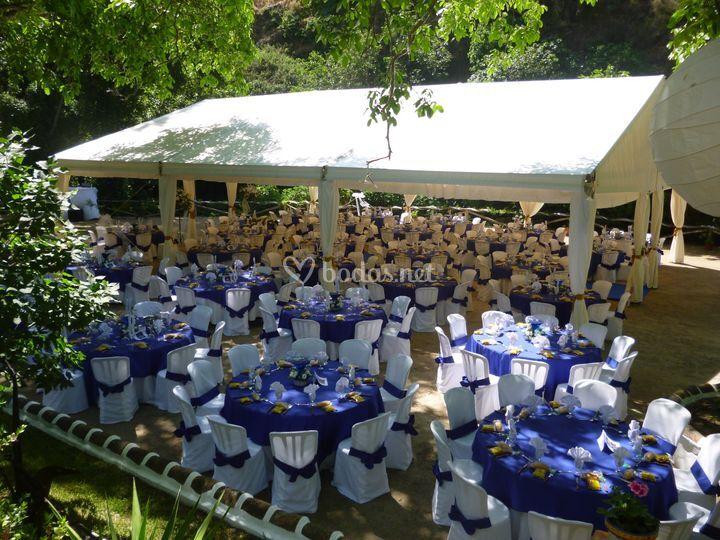 Carpa boda