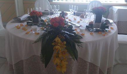 Anabel Flores y plantas 1
