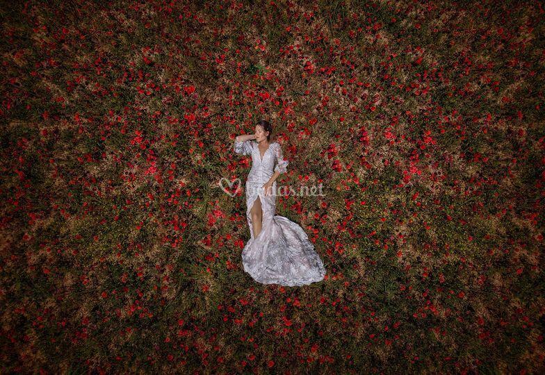 Fotografías de boda con dron