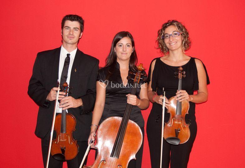 Trio Amati