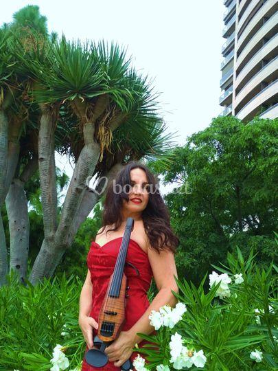 JL Violin