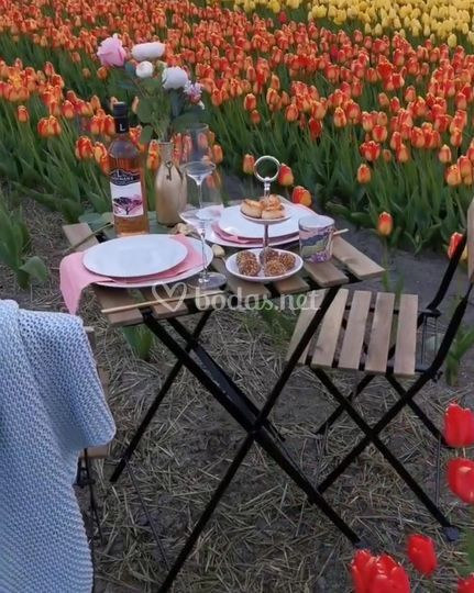 Lugares de fotografía y picnic