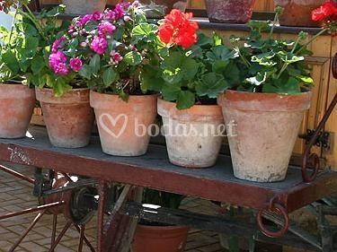 Detalle decoración jardines
