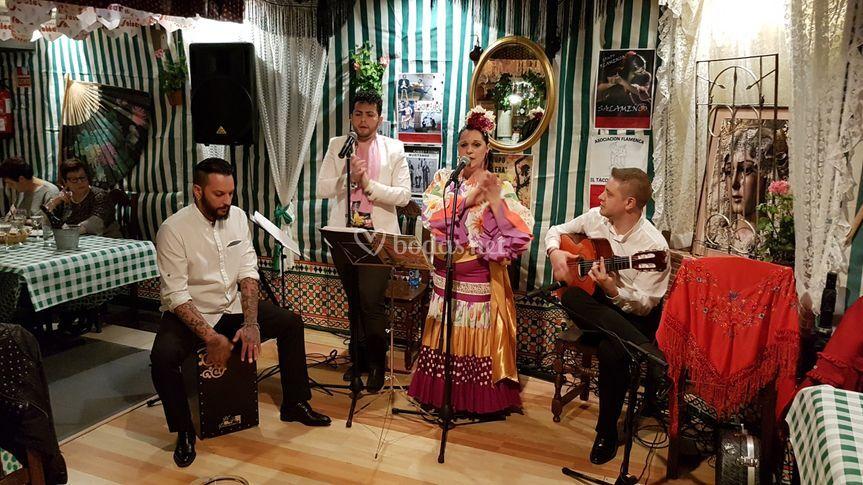 Actuación en Zamora
