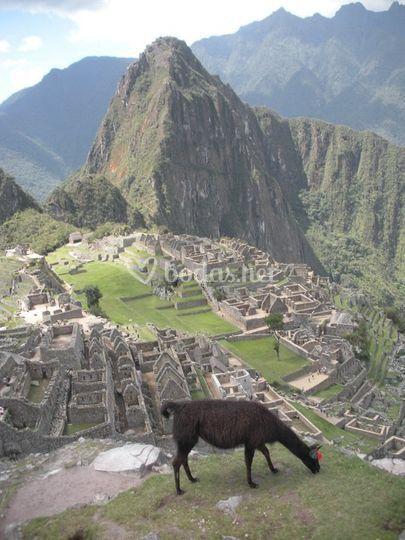 Perú viaje