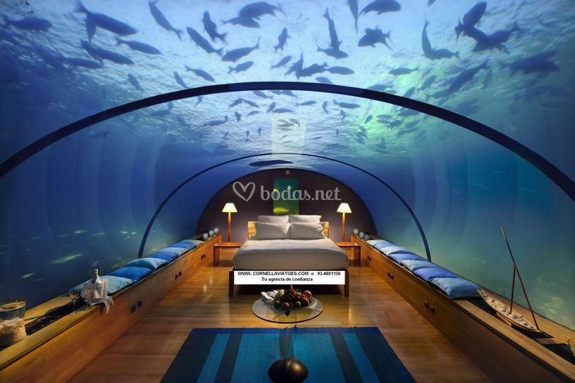 Maldivas bajo el mar