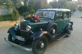 Hollywood Martin Cars