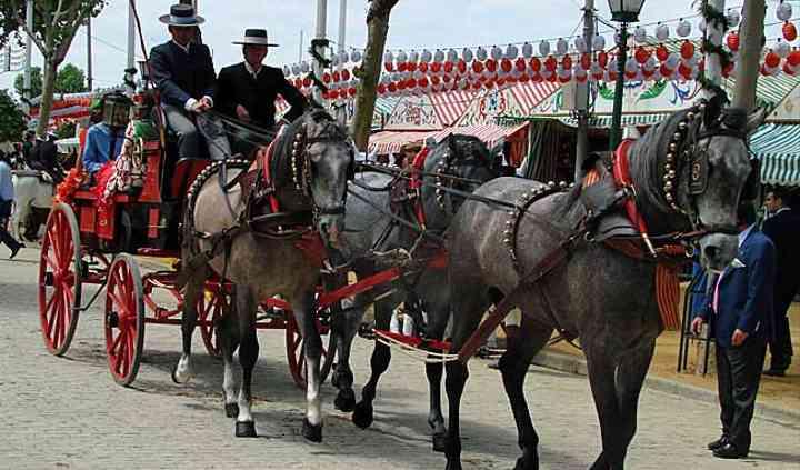 Coches de caballos para bodas
