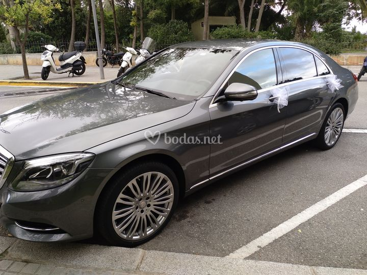 Grupo B: Mercedes S Largo