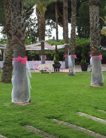 Ambientación de la ceremonia