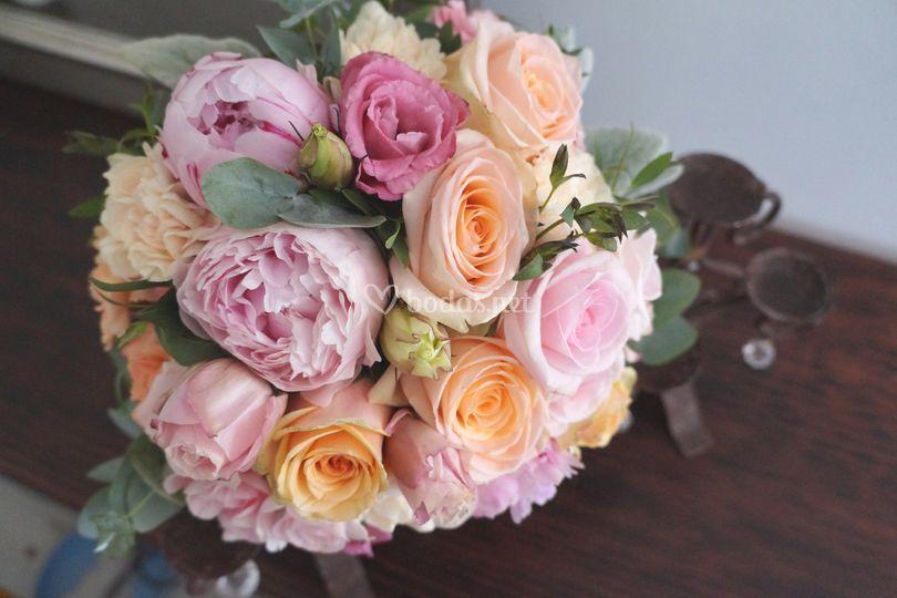 Peonia rosas