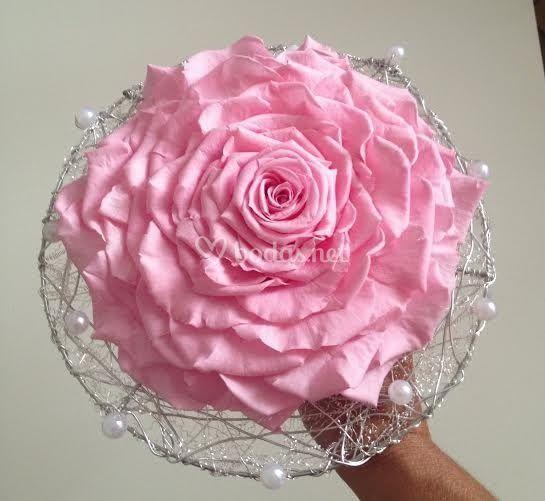 Rosmelia preservada rosita