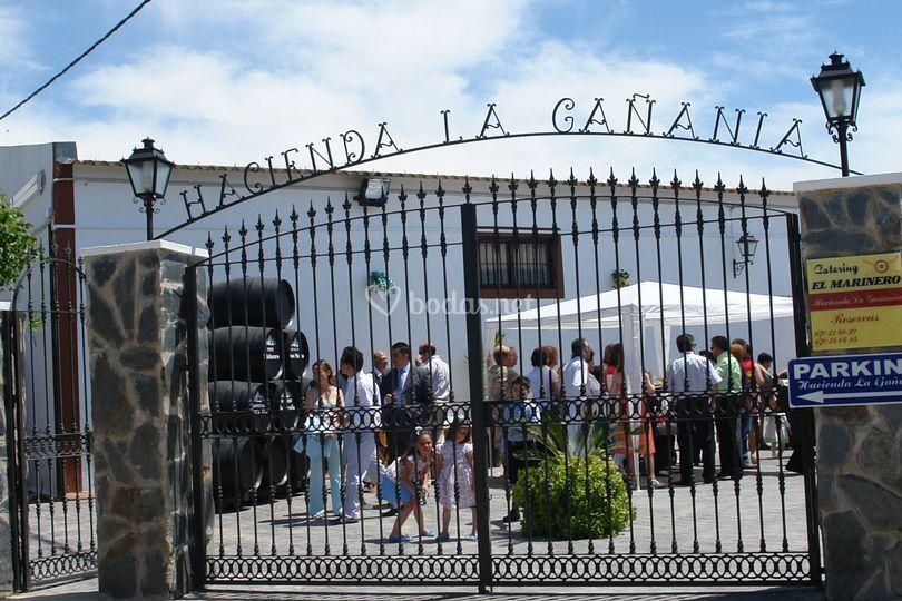 Hacienda la Gañanía mi