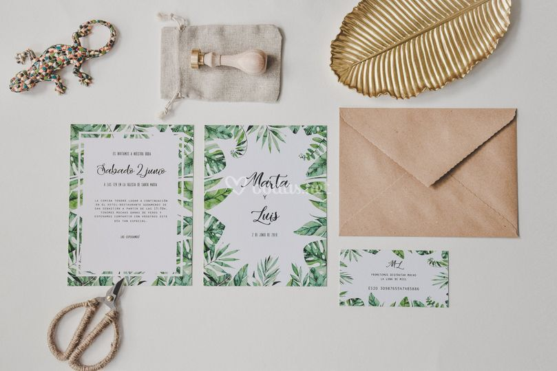 Colección 'Tropical'
