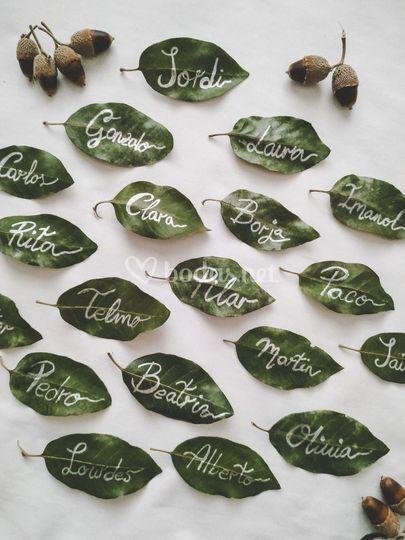 Marcasitios con hojas naturale