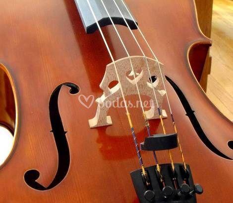 Cuarteto de música para bodas