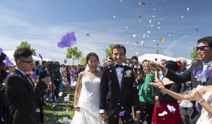 Petra Majerova Weddings 1