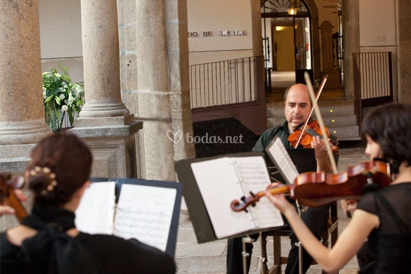Música para bodas de Violines boda