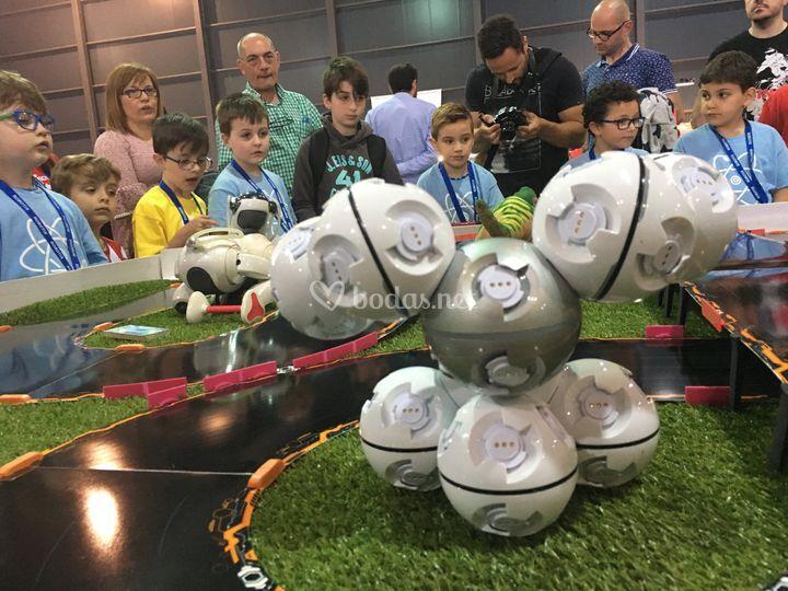 Feria Robotix