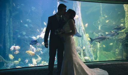 Palma Aquarium 1
