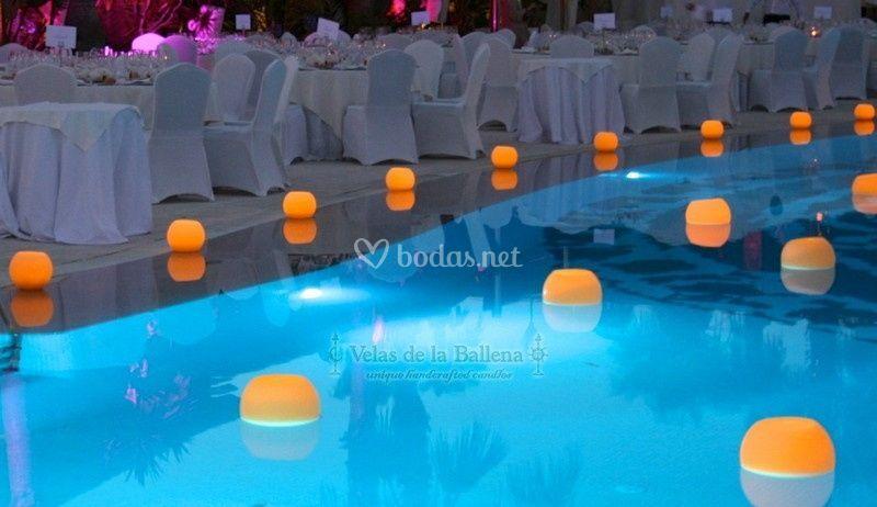 Velas de la ballena - Proveedores de velas ...