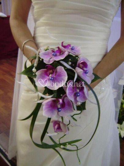 Ramo novia, orquídeas