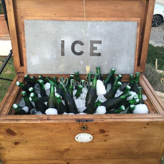 Cervezas frescitas