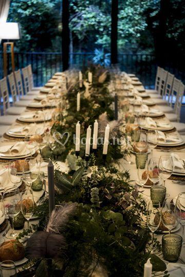 Banquete salvaje